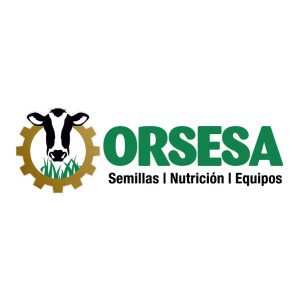 orsesa.com.pa